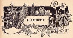 Decembre.jpg