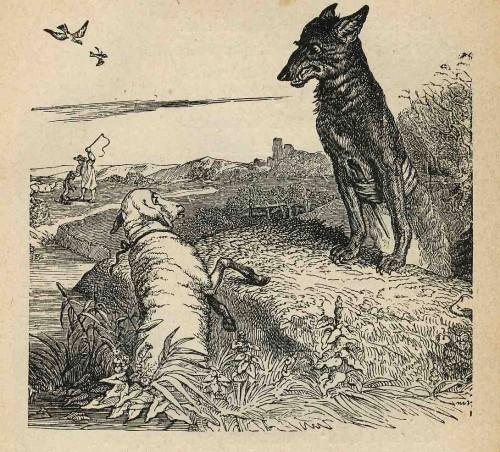 Loup & Agneau.jpg